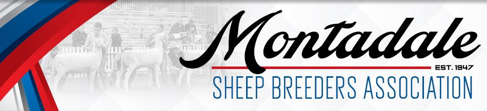 Montadale Sheep Breeders Association | Breeder Ads